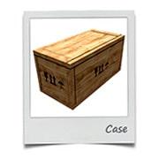 LCL case
