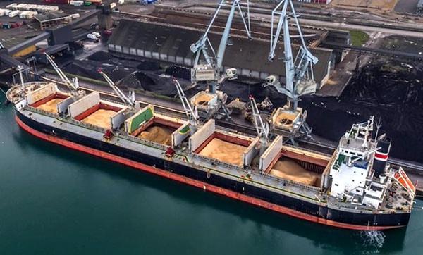 Sea Freight Bulk