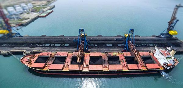 Sea Freight Bulk Ship
